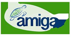 Amiga Island Experience